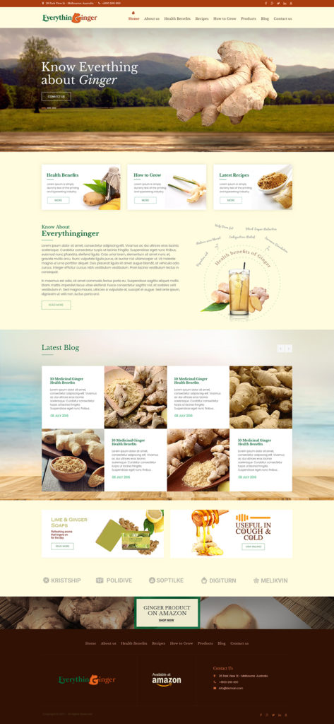 Custom Website Design for Everythin Ginger