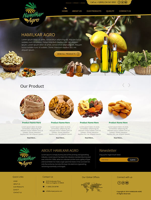 Custom Website Design for Hamilkar Agro