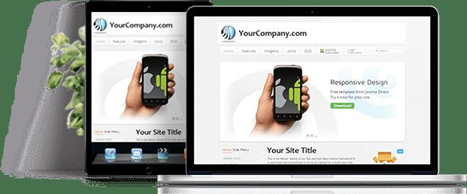 Professional Website Design Offer